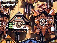 Gold Coast, Australia, Cuckoo Clock Shop